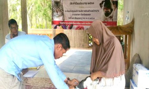สำนักงานปศุสัตว์อำเภอเทพา บริการฉีดวัคซีนป้องกันโรคพิษสุนัขบ้า ให้แก่สุนัข แมว